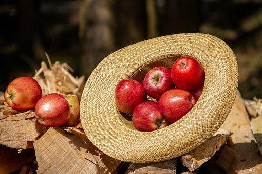 逆さになった麦わら帽子に詰め込まれたたくさんのリンゴ