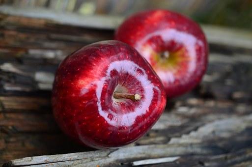 つやつや光った真っ赤な2つのリンゴ