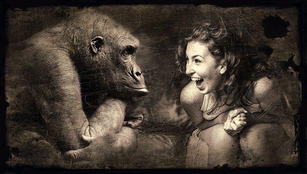 しゃがみこんで年老いたチンパンジーと話し込んでいるように見える若い笑顔の女性