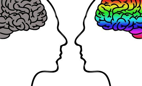 モノクロの脳とカラーの脳を持つ2人の横顔を表したイラストた