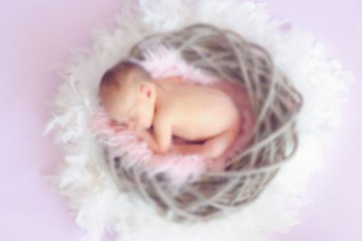 ふわふわの羽毛に包まれカゴの中で眠る赤ちゃん