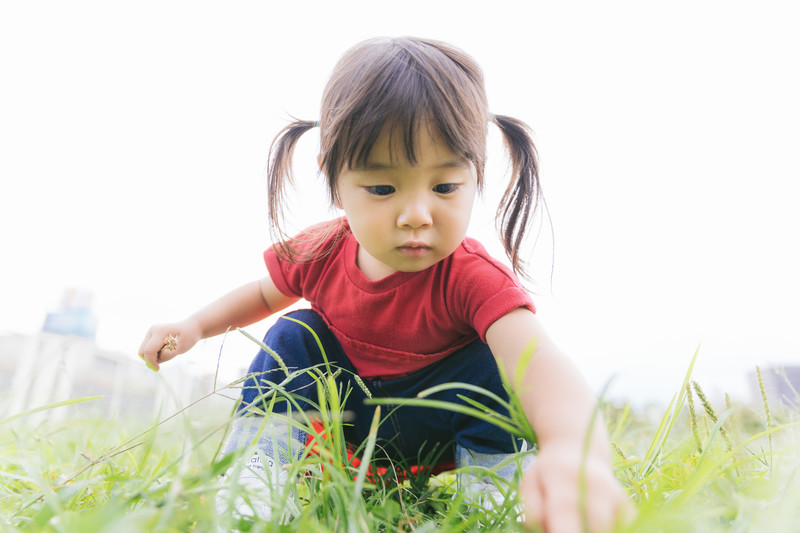 原っぱで草をつむ幼い女の子